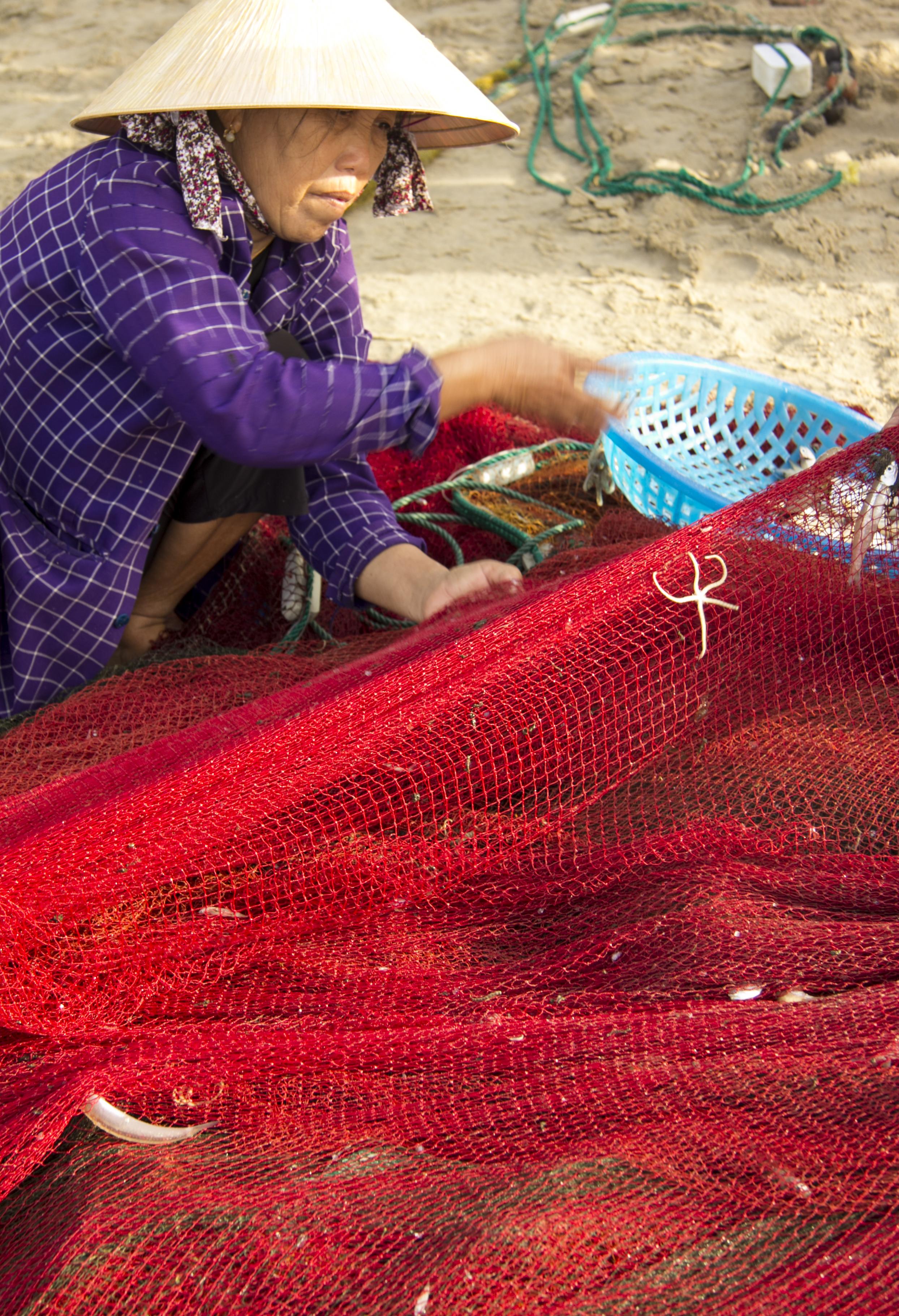 Die Fischerin sammelt den Fang des Tages ein. Zusammen mit etwa 10 anderen Menschen haben sie das Netz frühmorgens an einem Strand in Mui Ne, Vietnam, eingeholt.